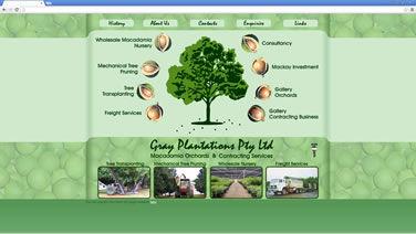 Gray Plantations